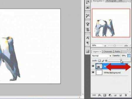 Как в фотошопе сделать текст с рисунком